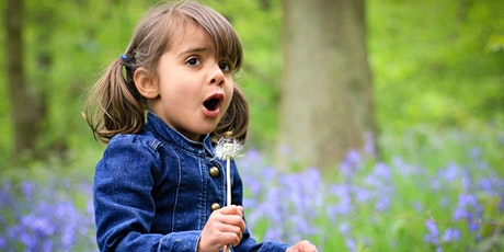 Wild Tots in Holywells Park tickets