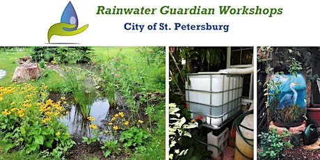 Rainwater Guardian Virtual Class: July 20, 2021 LUNCH TIME: noon to 1:30 pm tickets
