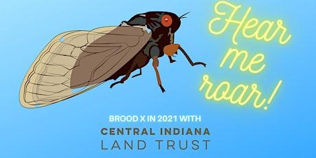 Hear Them Roar!  Happy Hour with the Extraordinary Brood X Cicadas tickets