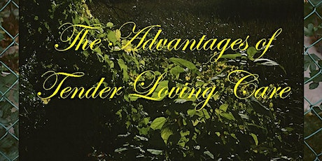 The Advantages of Tender Loving Care - Virtual Tour & Artist Talk tickets