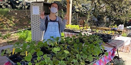 Open Farm Day: Plant & Seed Swap II tickets