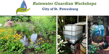 Rainwater Guardian Virtual Class: August 30, 2021 from 6 to 8 p.m. tickets