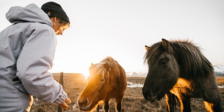 How Animals Experience the World: Fireside Chat with an Animal Communicator tickets