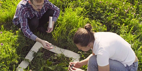 Ecology and Biodiversity Assessment Skills tickets