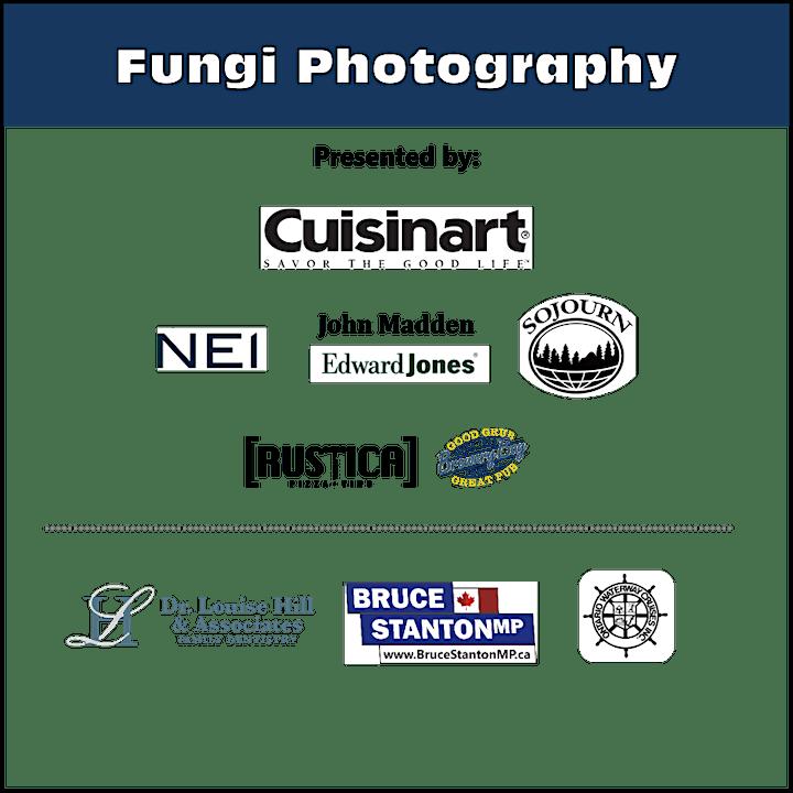 Passport to Nature: Fungi Photography image