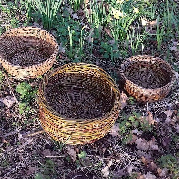 Basket Willow Weaving Workshop image