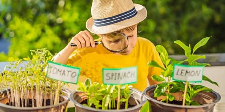 Garden & Nature Virtual Camp for Youth with Autism & Other Disabilities tickets