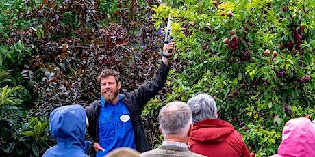 Fruit Tree Pruning Essentials tickets