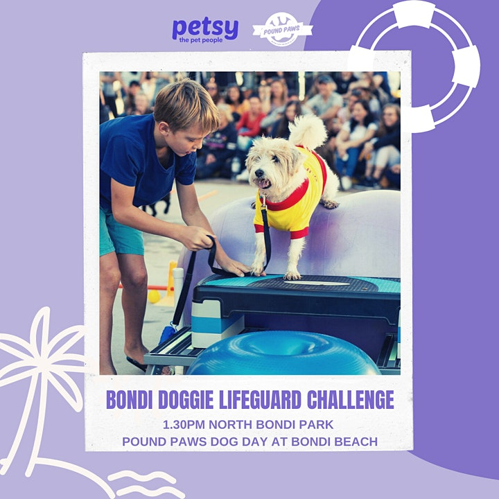Pound Paws Dog Day at Bondi Beach image