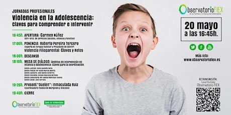 Jornadas Profesionales sobre la Violencia en la Adolescencia entradas