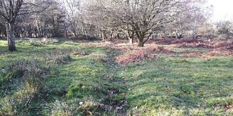 Camps, Trenches, Trains and Tanks: Archaeology of WW2 in Sherwood Forest tickets