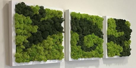 Atelier cadre végétal en lichen billets