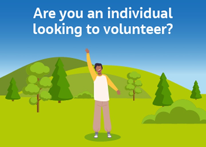 Get on board and into Trustee Volunteering! image