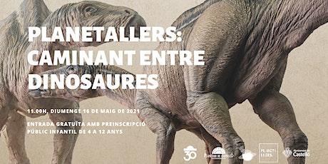 """Planetaller Infantil Planetari """"Caminant entre dinosaures"""" entradas"""