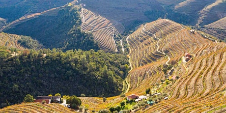 Online Wine Tasting Series: Portugal v Spain with Rose Murray Brown MW tickets