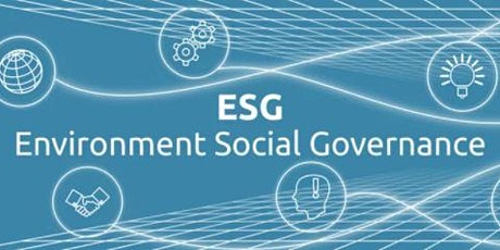Environment, Social and Governance - 'Self Assessment' versus 'Regulation' tickets