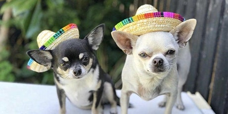 Cinco De Fido tickets