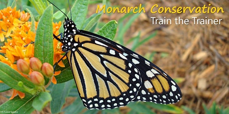 Introduction to Monarch Conservation - 2-day Workshop, May 10 & 13, 2021 tickets