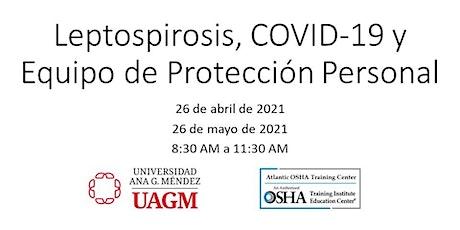 Leptospirosis, COVID-19 y Equipo de Protección Personal entradas