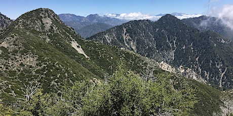 Botanizing the San Gabriel Mountains with Evan Meyer tickets