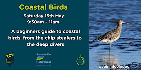 Coastal Birds tickets