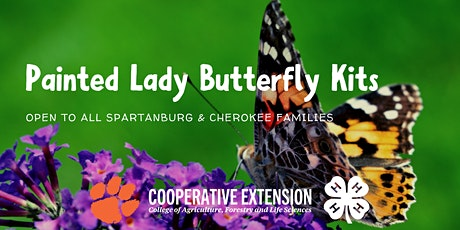 Butterfly kits & Refills tickets