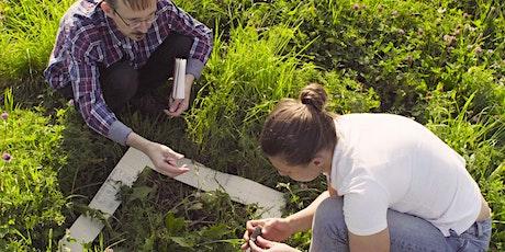 Ecology and Biodiversity Assessment Skills (evening delivery) bilhetes