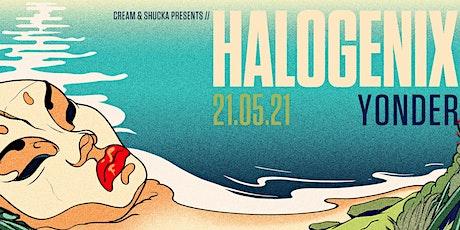 HALOGENIX (UK) - QUEENSTOWN ingressos