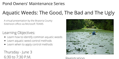 Pond Owner Maintenance Series:  Aquatic Weeds The Good,  Bad, and  Ugly tickets