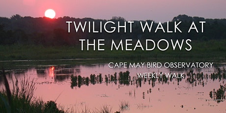 Twilight Walk at the Meadows tickets