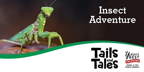 Insect Adventure (Zoom) - Grades 1-5 tickets