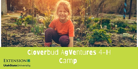 Cloverbud AgVentures  4-H Camp tickets