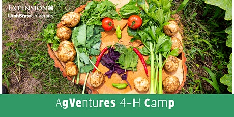 AgVentures 4-H Camp tickets