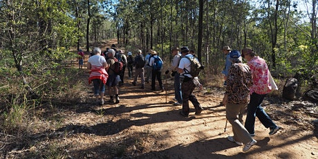Spring Mountain Forest Park Guided Bushwalk tickets