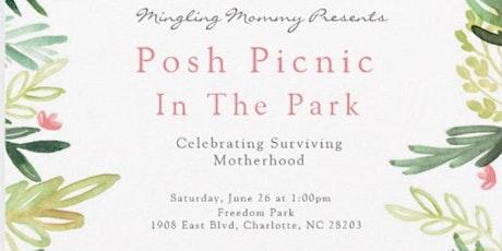 Posh Picnic in the Park tickets