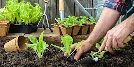 Community Garden Workshop Series - Seasonal Planting & Harvesting tickets