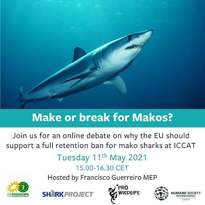 Make or Break for Makos? image