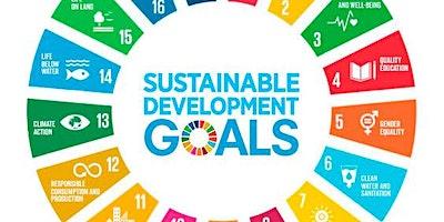 Matching SDG Pledges with Impact Metrics