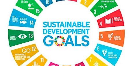 Matching SDG Pledges with Impact Metrics tickets