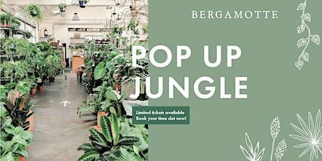 Bergamotte Pop Up Jungle // Edinburgh tickets