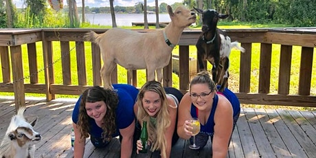 Goat Yoga Tampa plus free drink! In the Loop Brewing, Land O Lakes; 5/30/21 tickets