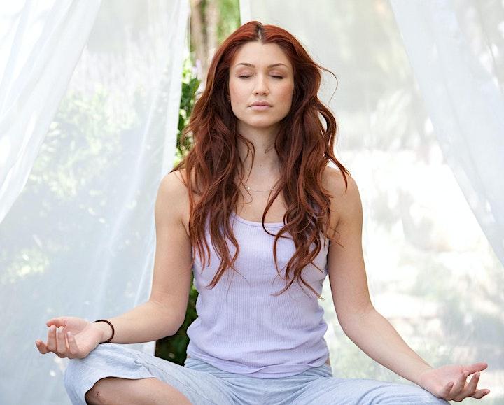 12 Step Manifestation & Meditation Course image
