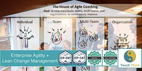 Enterprise Agility + Lean Change Management (November 2021) tickets