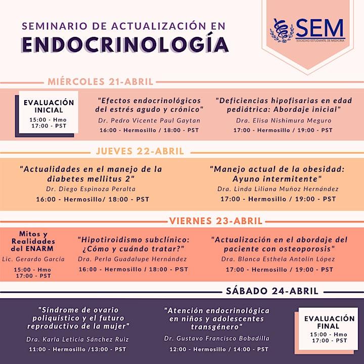 Imagen de Seminario de Actualización en Endocrinología