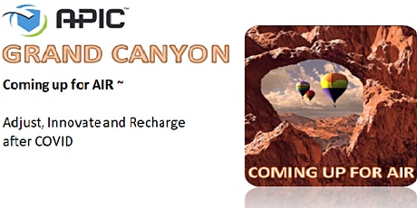 APIC Grand Canyon 2021 Fall Conference:  Coming Up for Air tickets