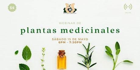 Webinar de Plantas Medicinales ingressos