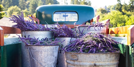 Lavender Farm Visit tickets