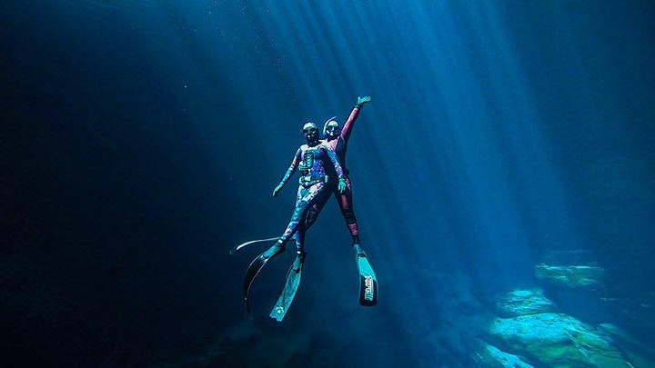 Beginner Freediving Course - Manly image