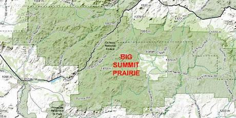 Big Summit Prairie Wildflower Drive and Hike tickets