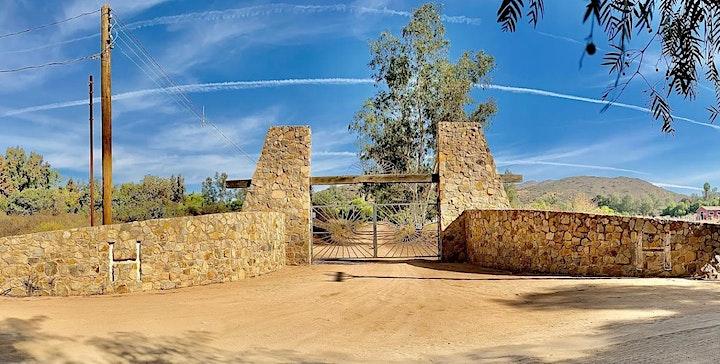Imagen de Nahuales